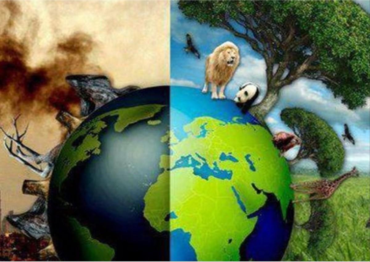 La questione ambientale